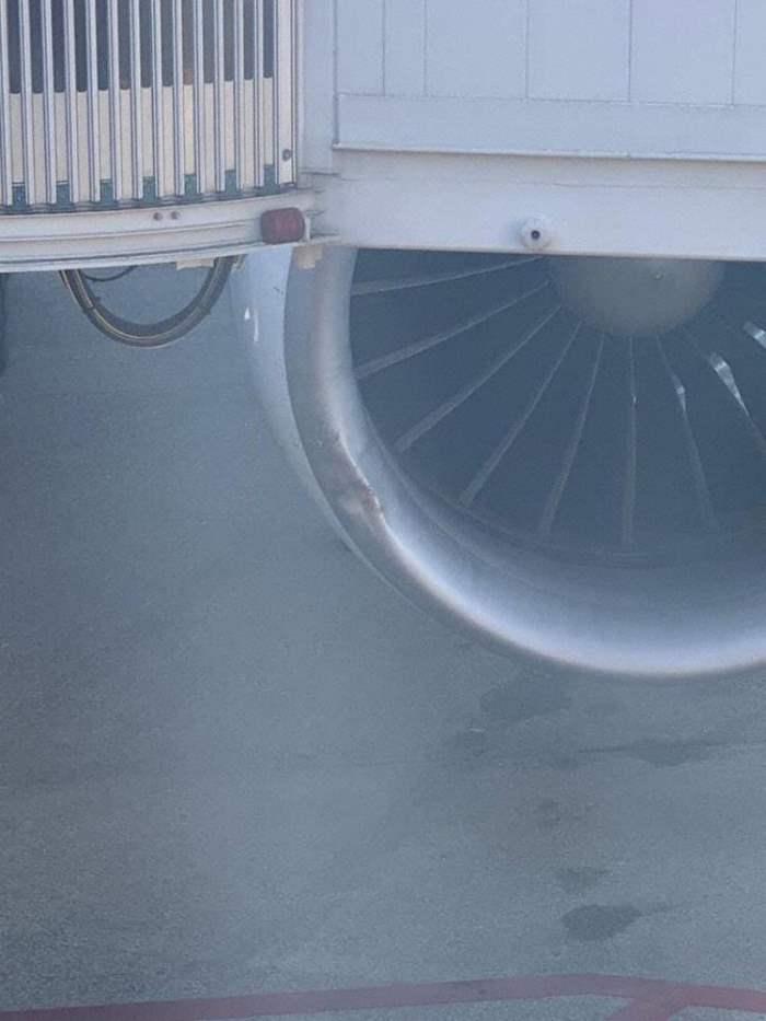 KLM Boeing 777-200, птицы, столкновение, самолет,