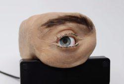 Веб-камера Eyecam имитирует движения человеческого глаза