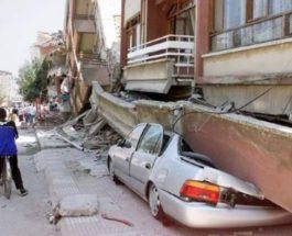 Турецкий профессор, Турция, землетрясение, Стамбул,
