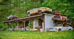 «Самые большие в мире джунгли старых автомобилей, возрастом 80 лет»: уникальное место, где можно увидеть крайне редкие автомобили (Видео)