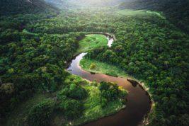 астероид, Амазонка, тропический лес,