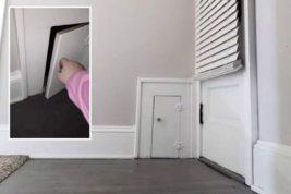 маленькая дверь,