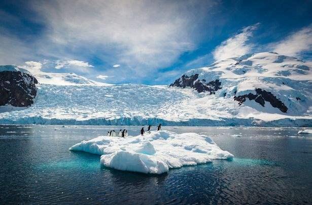 таяние льдов, океан,