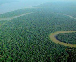 Амазонка, леса, легкие Земли, загрязнение,