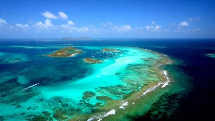 Ученые, Карибское море,