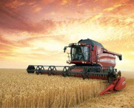 зерновые, аграрная продукция,