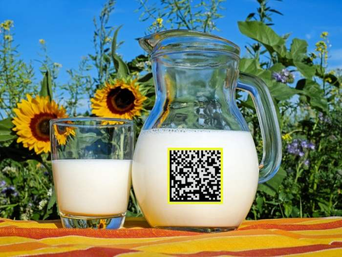 молочная продукция, маркировка молочный продукции, Честный ЗНАК,