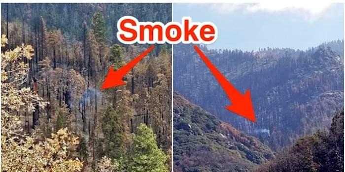 секвойя, пожар, Калифорния,