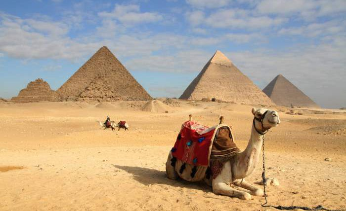 COVID-19, Египет, ограничения,