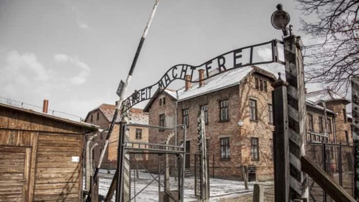 Давид Душман, Освенцим,