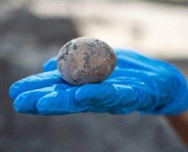 Израиль, яйцо,