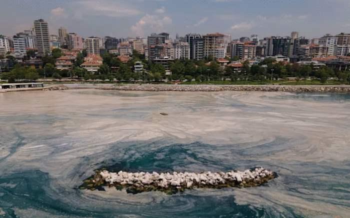 Турция, очистка моря,