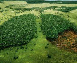 изменение климата, ООН,