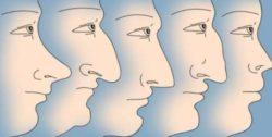 Форма носа показывает, будем ли мы богатыми