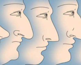 нос, форма носа, богатство,