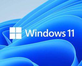 обновление, Windows 11, Windows 10,