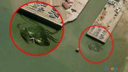 Самые жуткие вещи, которые можно увидеть на Google Maps — от «мест убийства» до оккультных символов