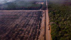 Амазония выделяет больше углекислого газа, чем может поглотить