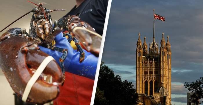 Великобритания, омары, раки,