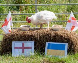 Евро-2020, Украина, Англия,