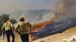 В 100 км от Барселоны бушует сильный пожар