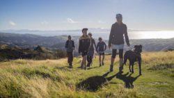 Новую Зеландию назвали лучшим местом в мире, где можно пережить апокалипсис.