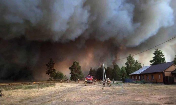 США, Россия, лесные пожары,
