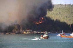 Не менее четырех жертв лесных пожаров в Турции