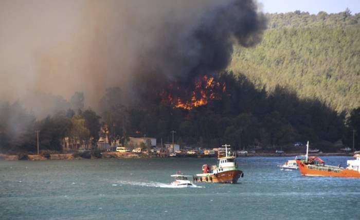 Турция, пожары, лесные пожары,