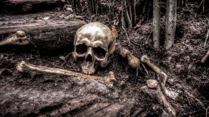 Южная Корея, могила, археологи, великан,
