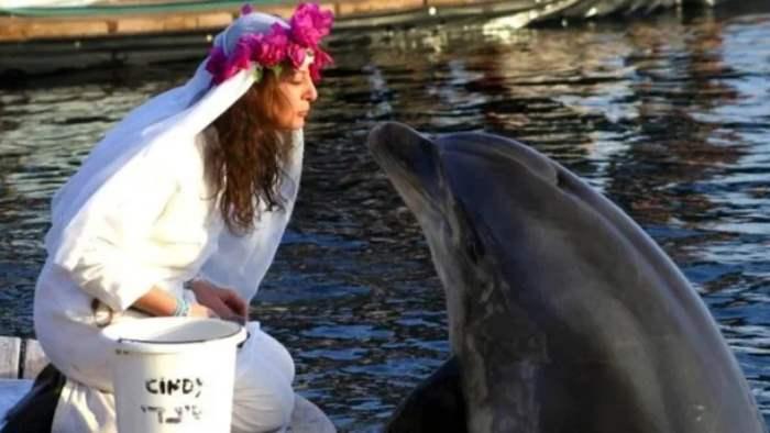 дельфин, замуж, Шэрон Тендлер,