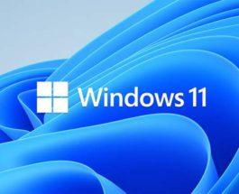 Windows 10, Windows 11,