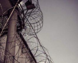 Беларусь, забор, колючая проволока,
