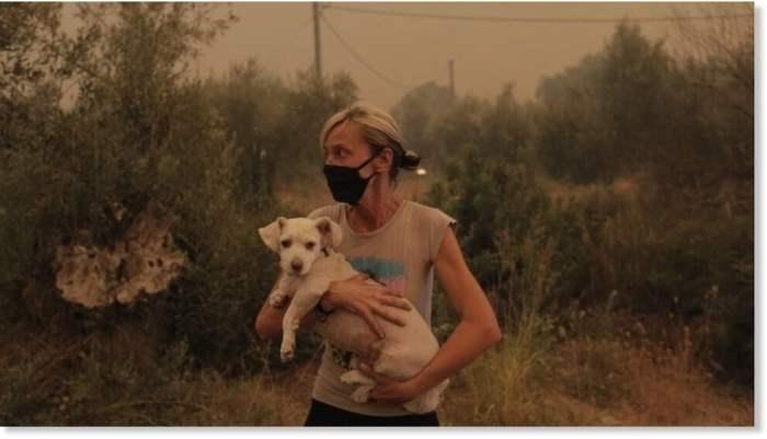 Греция, лесные пожары,