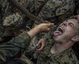 США, пехотинцы, кровь кобры,