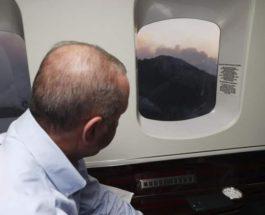 Турция, лесные пожары, Эрдоган,