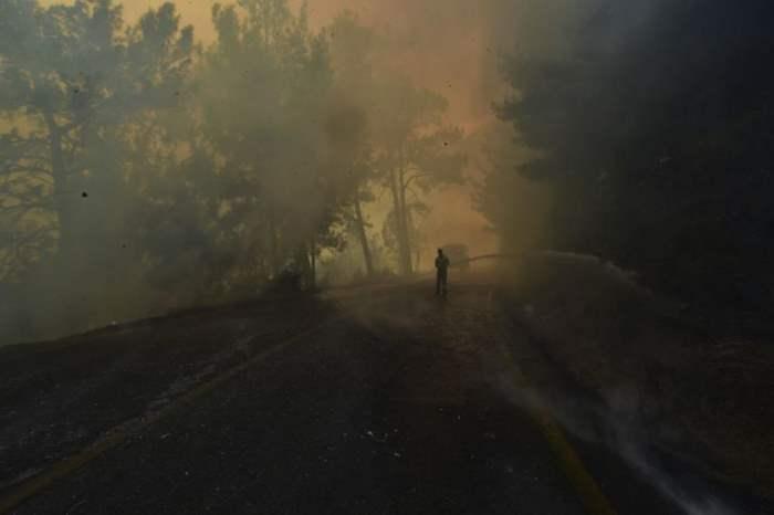 Турция, лесные пожары,