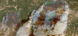 Из-за лесных пожаров: ЧП в ряде регионов Турции