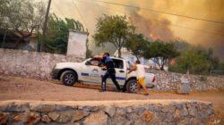 По меньшей мере восемь человек погибли в результате лесных пожаров на юге Турции