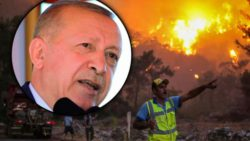 Эрдоган: Пожары в Турции — самые страшные в истории страны