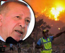 Эрдоган, Турция, пожары,