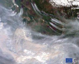 Якутия, лесные пожары,