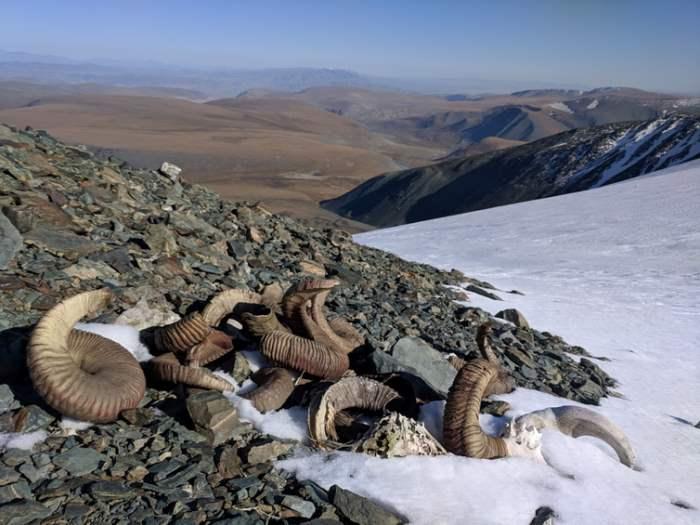 артефакты, таяние льда,