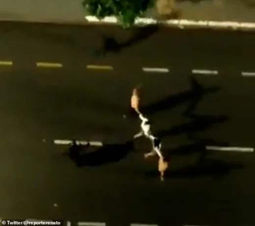 бандиты, нападение, Сан-Паулу,