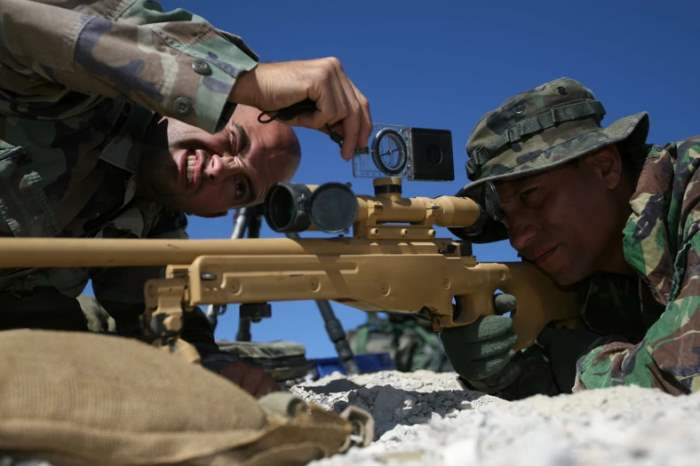 AWP, винтовка, Accuracy International,