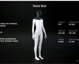 Tesla Bot, робот, Илон Маск,