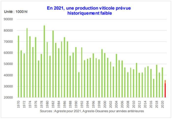 Виноделы во Франции ожидают худший урожай с 1945 года