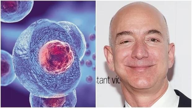 Джефф Безос, стволовые клетки, старение,