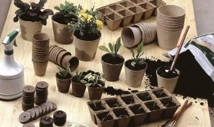 сад, огород, кассеты для рассады,