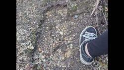 На горе Сент-Хеленс нашли следы снежного человека?